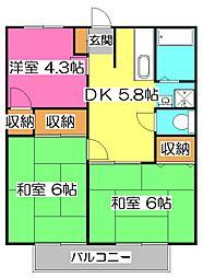 埼玉県所沢市和ケ原3丁目の賃貸アパートの間取り
