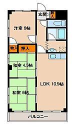 サンクレスト富士見マンションA[203号室]の間取り