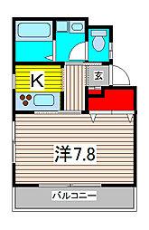 埼玉県さいたま市中央区新中里1丁目の賃貸アパートの間取り