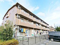 静岡県富士市一色の賃貸マンションの外観