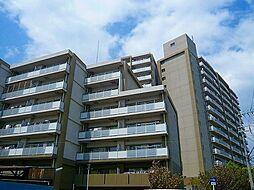 西田辺団地[10階]の外観