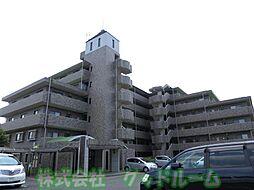 ドルフ・ソニア・ドーロ[4階]の外観