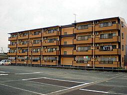 レジデンスHARUMI[401号室]の外観