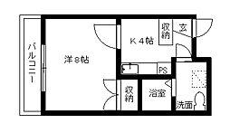 カーサ・ミラ北寺島[5階]の間取り
