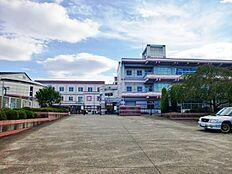 松前台小学校