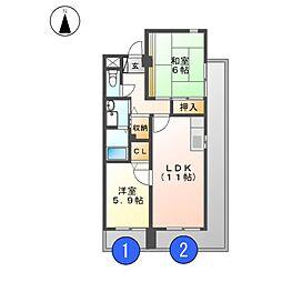 ピーナッツボーイII[6階]の間取り