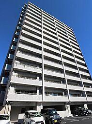 サーパス橘通東[602号室]の外観