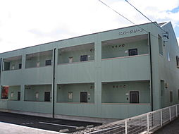 エバーグリーン 1階[104号室]の外観