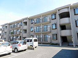 埼玉県さいたま市浦和区木崎5丁目の賃貸マンションの外観