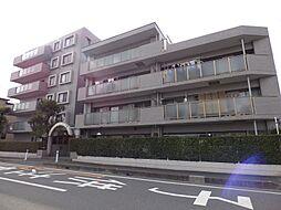埼玉県さいたま市南区内谷7丁目の賃貸マンションの外観