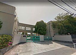 近隣小学校(白沢小学校)