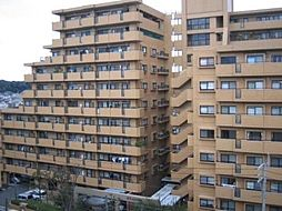 ダイアパレス大橋南 弐番館[2階]の外観