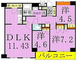 ララミー倉田[3階]の間取り