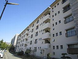 金剛第三住宅222棟[3階]の外観