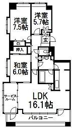 アルス円山[3階]の間取り