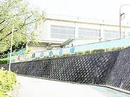 小豆坂小学校まで徒歩約4分。
