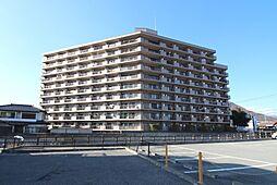 サンコーレ甲運[5階]の外観