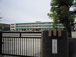 市立立教小学校