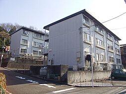 チェリーハイツ諏訪A[3階]の外観