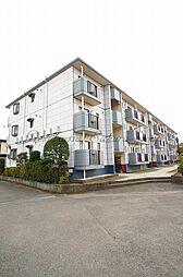 神奈川県藤沢市辻堂新町3丁目の賃貸マンションの外観