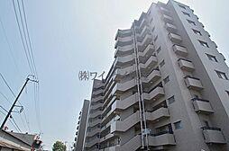 サーパス笹沖一番館[5階]の外観