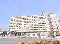 松ノ木町団地1号棟[704号室]の外観