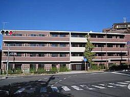 プレール・ドゥーク成増[4階]の外観