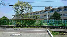 加古川市立加古川中学校まで1180m
