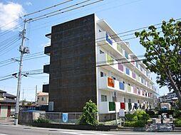 CASA442[3階]の外観