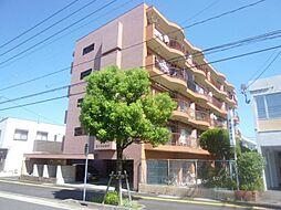 コーポ南宮崎[505号室]の外観