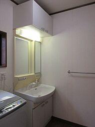 くもり止めヒーター付きの洗面台。足元だけでなく上部にも収納棚があり、洗剤のストックなどもまとめて収納できますね。