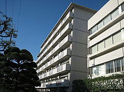 テルツォ南新在家[504号室]の外観