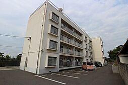 e-lux MIYAKO[4階]の外観