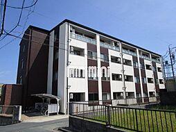 静岡県浜松市中区鴨江1丁目の賃貸マンションの外観