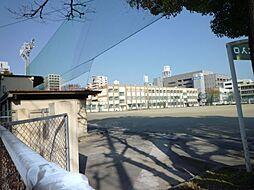 ディモーラ栄[5階]の外観