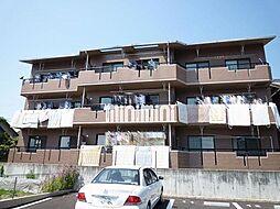愛知県岡崎市真伝町字亀山の賃貸マンションの外観