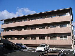 コンフォートマンション[203号室]の外観