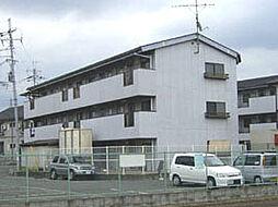 きらめき壱番館・弐番館[1-303号室]の外観