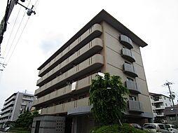グレイスミシマ[5階]の外観