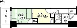 1DK 和室6畳 キッチン約4.6畳