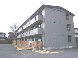 アルファタウン新町C[1階]の外観