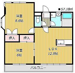 千葉県船橋市西船2丁目の賃貸マンションの間取り