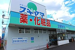 ドラッグスギヤマ康生通店