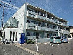 岡山県岡山市南区芳泉4丁目の賃貸マンションの外観