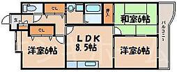 広島県広島市安芸区中野東1丁目の賃貸マンションの間取り