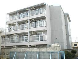 エースマンション[4階]の外観