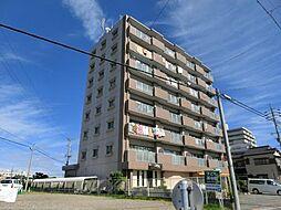 愛知県あま市新居屋上古川の賃貸マンションの外観