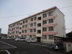 エバーライフ花ガ島[406号室号室]の外観