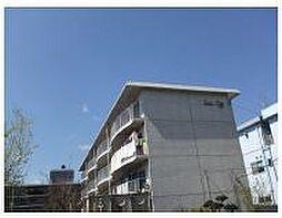 サンシティ[4階]の外観