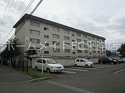 札幌西月寒団地5号棟[4階]の外観
